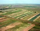 Arendaşii sunt principalii cumpărători de terenuri agricole