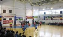 handbal hcm roman