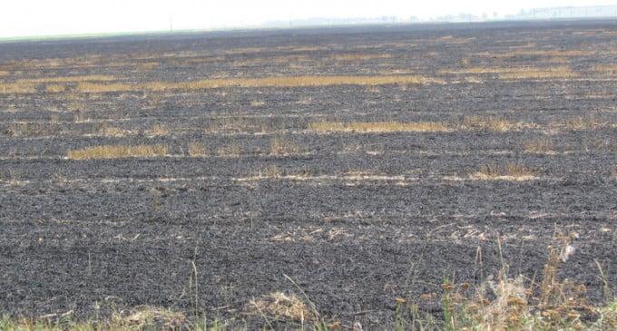 Zeci de hectare au ars în incendii, în acest weekend