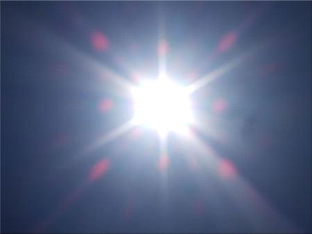 canicula soare