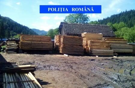 lemne confiscate IPJ Neamt 16iunie 2