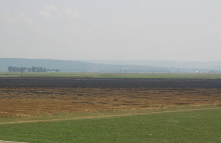 Incendii de mirişte la Roman şi Horia