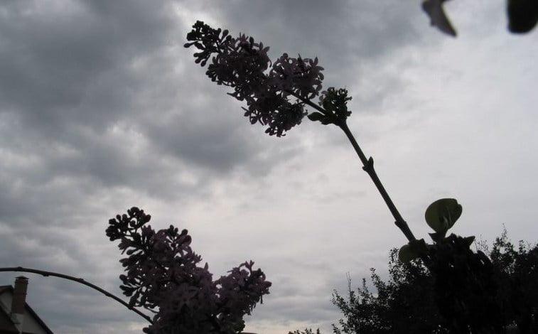 Vreme rece și intensificări temporare ale vântului, până vineri seară