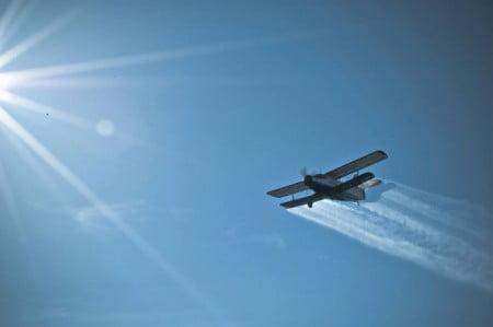 avion dezinsectie