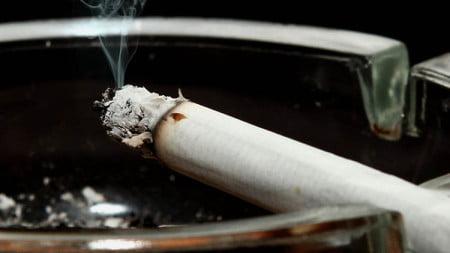 fumat15