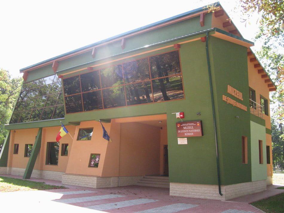 Atelier de educație muzeală, la Muzeul de Ştiințe Naturale