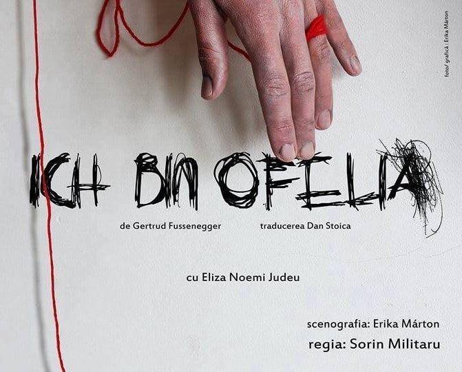"""Ce vedem în luna septembrie la Teatrul Municipal """"Bacovia""""?"""