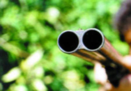 arma-pusca1