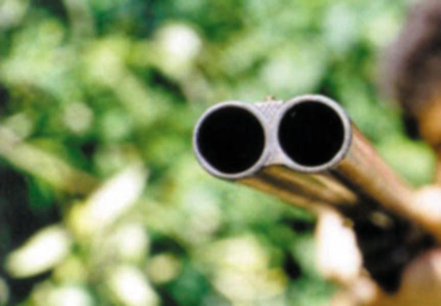 Pădurar cercetat de polițiști după ce a făcut uz de armă