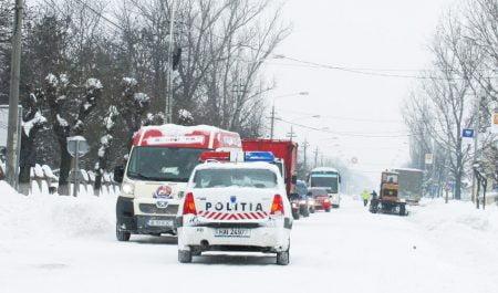 iarna-copy