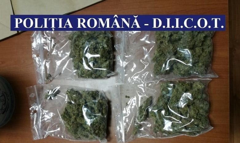 Polițiști de la Crima Organizată din Neamț, implicați în destructurarea unei rețele de trafic de droguri din Bacău