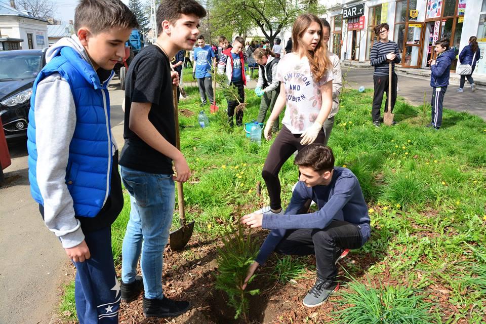 [FOTO] 5.000 de molizi plantați în câteva ore de sute de elevi, ONG-uri și angajați ai societăților private