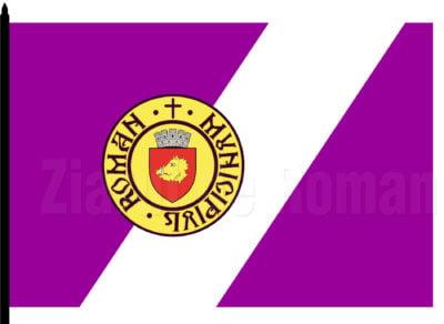 Varianta de steag propusă în luna aprilie 2018