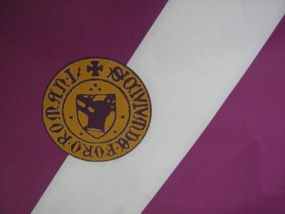 Steagul Romanului adoptat de Consiliul Local în 2009