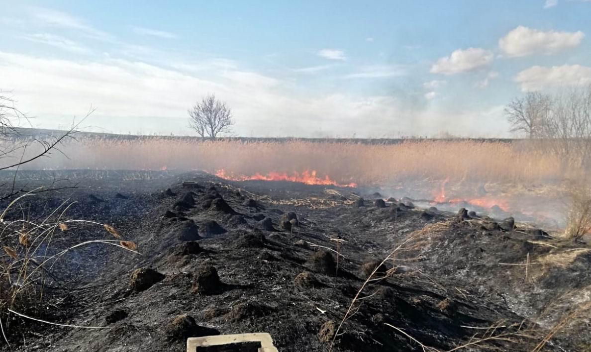 15 incendii de vegetație uscată, în acest sfârșit de săptămână