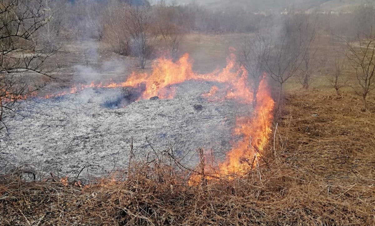 Incendiile de vegetație uscată au afectat miercuri 20 de hectare