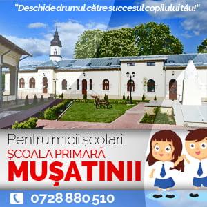 Scoala Musatinii