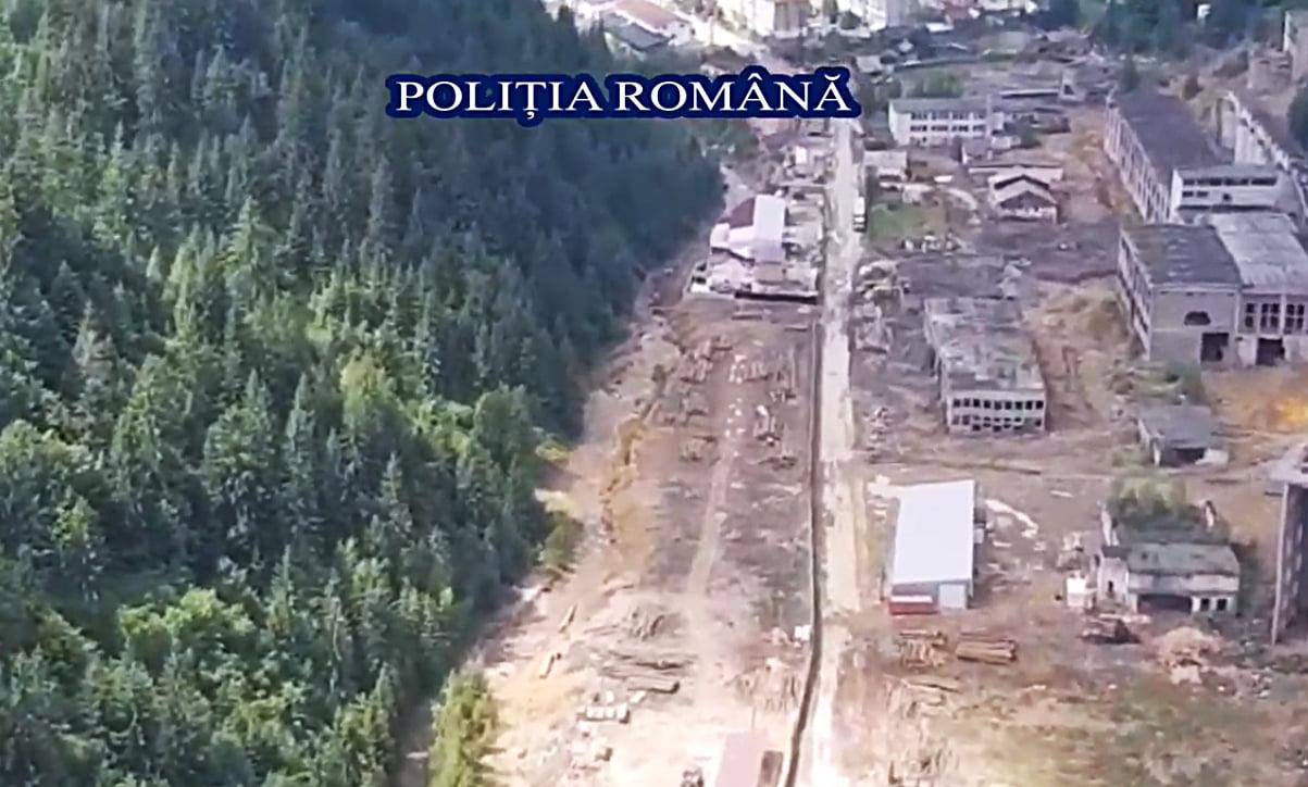 Polițiști nemțeni, intervenții în Maramureș pentru protejarea fondului forestier