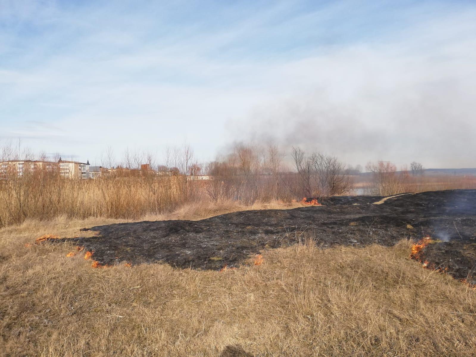Incendiu de vegetație uscată, la Cotu Vameș
