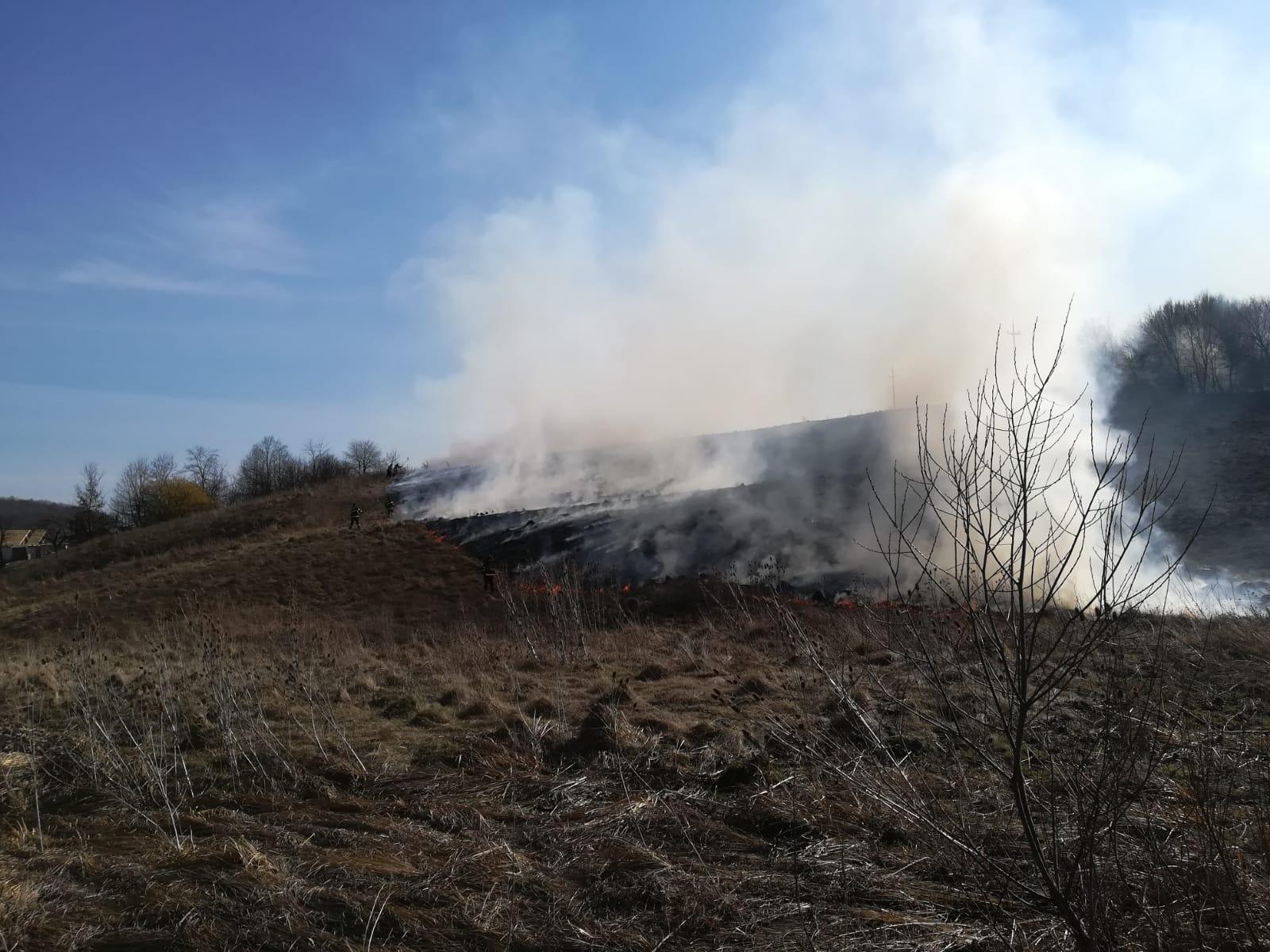 ISU Neamț: Stop incendiilor de vegetaţie uscată