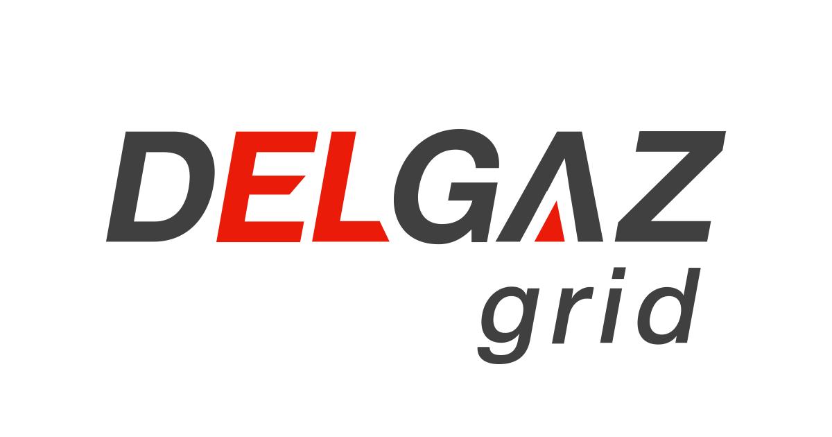 """Delgaz Grid: """"Eforturile de automatizare sunt parțial anulate de vegetația crescută în culoarele de protecție a liniilor electrice aeriene"""""""