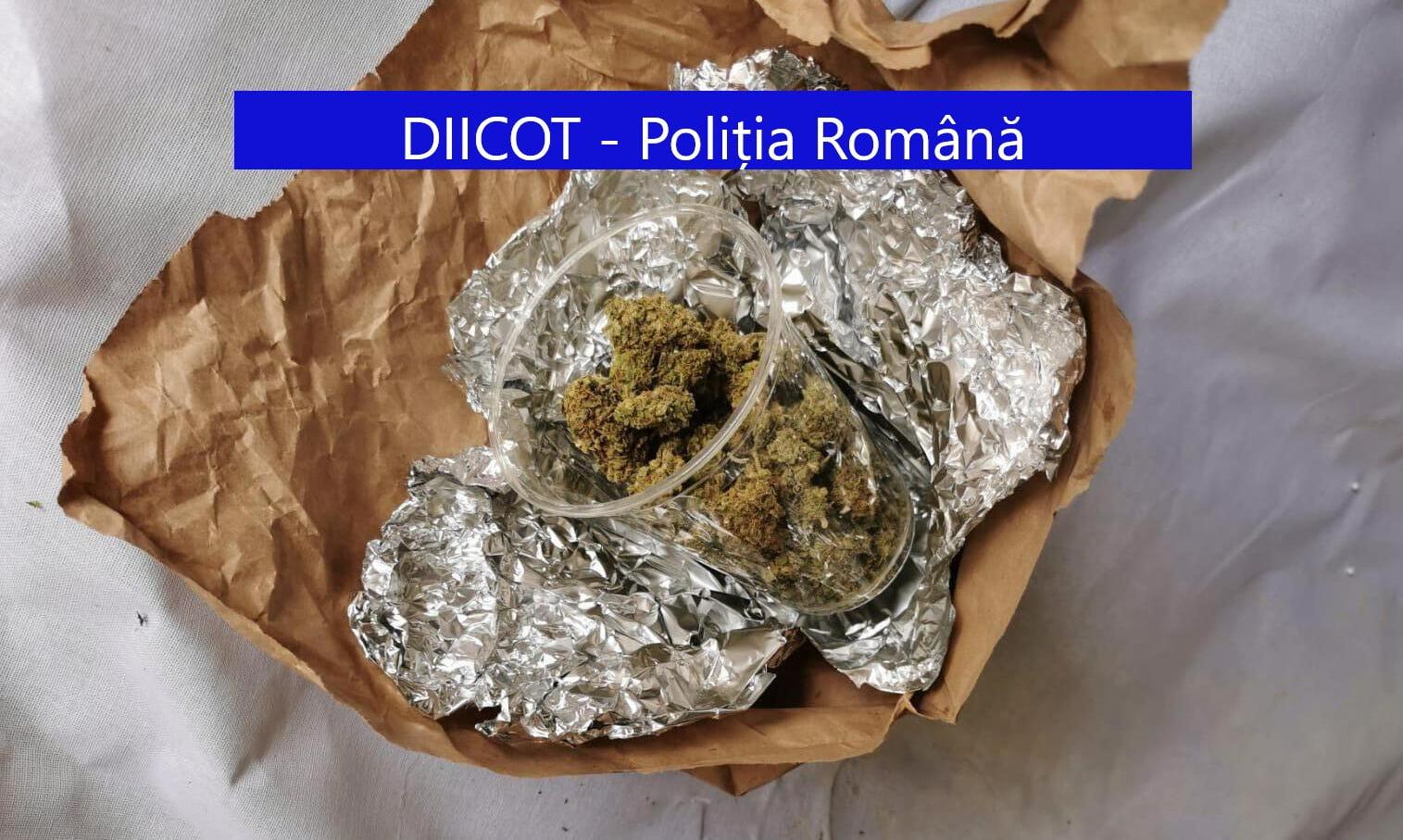 [VIDEO] Percheziții DIICOT în Neamț. Opt persoane reținute pentru trafic de droguri