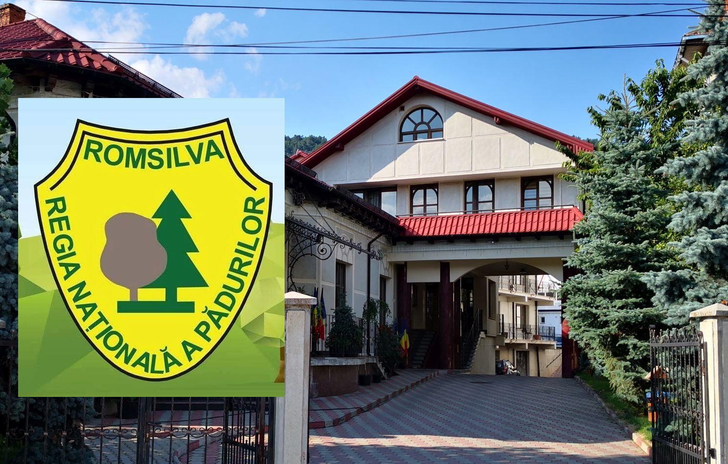 """Direcția Silvică Neamț: """"Astfel de declarații ale președintelui CJ Neamț dezinformează opinia publică"""""""