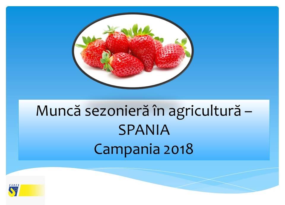 Selecție pentru recrutarea a 800 de lucrători în agricultură pentru Spania
