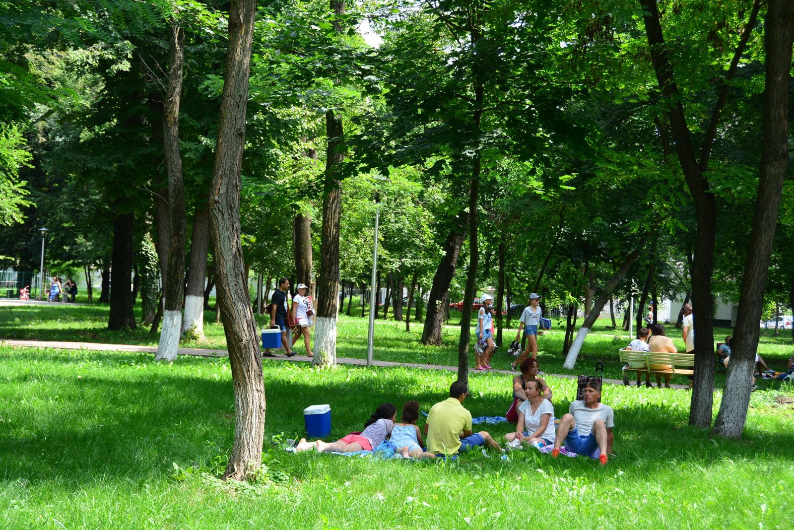 Programul activităților pregătite pentru picnicul din Parcul municipal de duminică, 14 iulie
