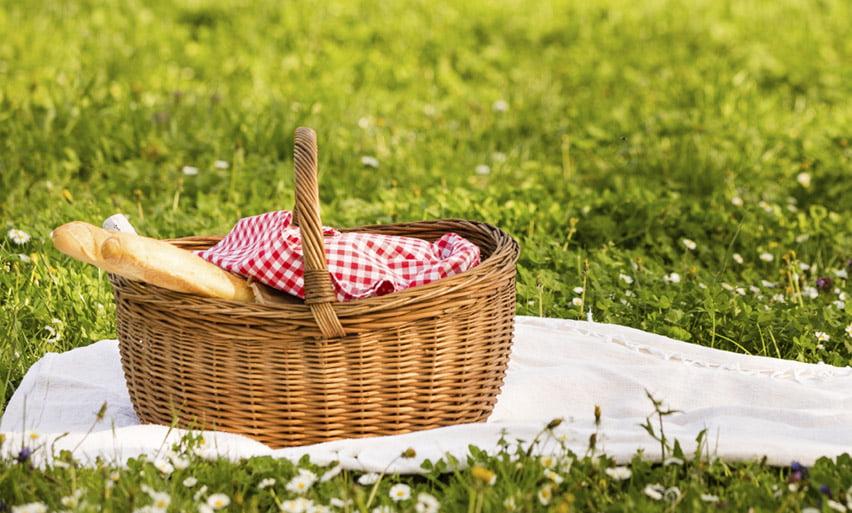 Romașcanii, invitați cu pătura la picnic în Parcul Municipal