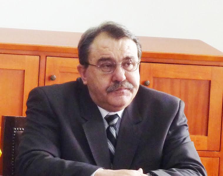 Viorel Stan, cu un picior în Parlamentul României