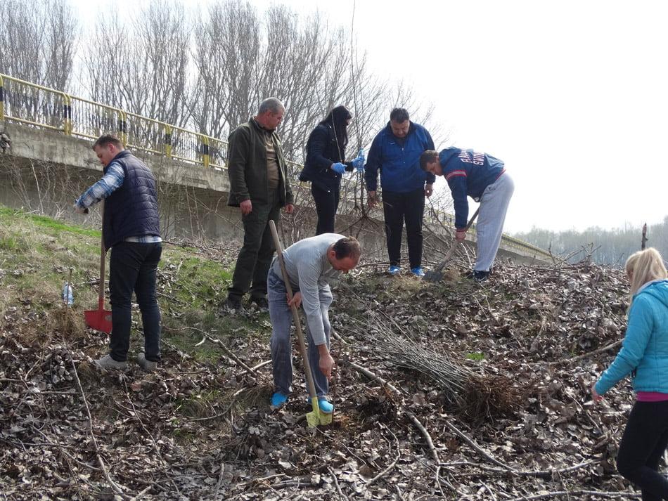 Polițiștii au plantat arbori în zăvoiul de lângă Siret, la Ion Creangă