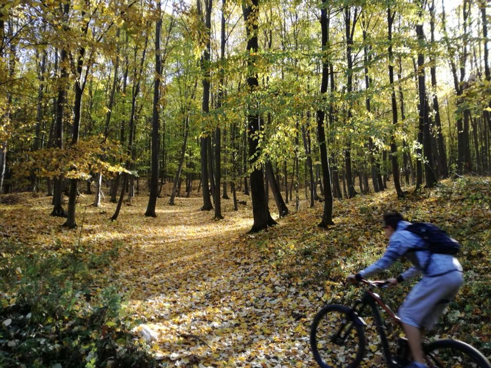 Maraton de mountain bike, în zona Roman