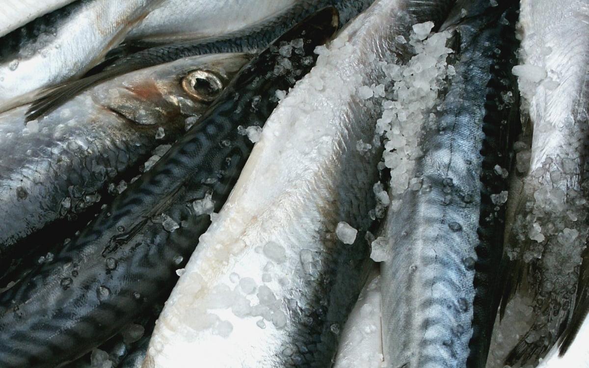 Peste 100 de kilograme de pește impropriu pentru consum, descoperite la un magazin din Roman
