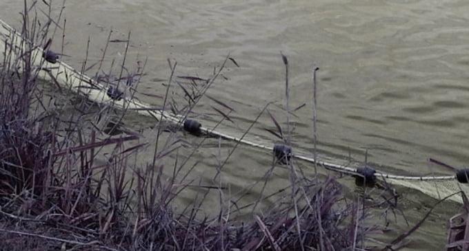 Tânăr din Cordun cercetat pentru braconaj piscicol pe râul Moldova