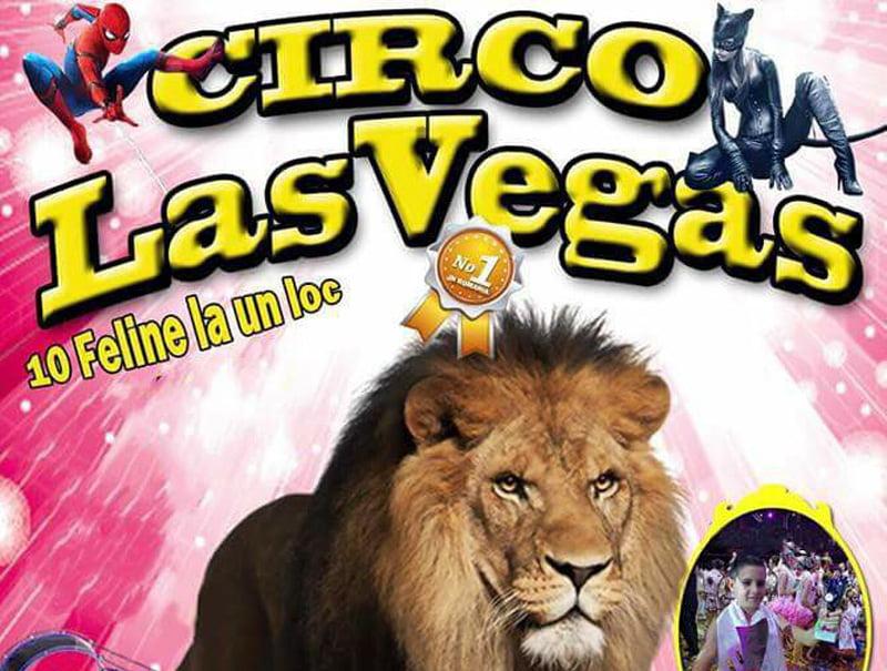 Circul Las Vegas Vargas revine în Roman