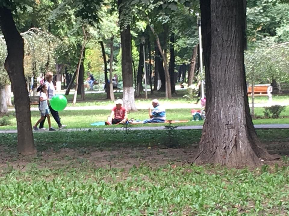 Interes scăzut pentru picnicul din Parcul Municipal
