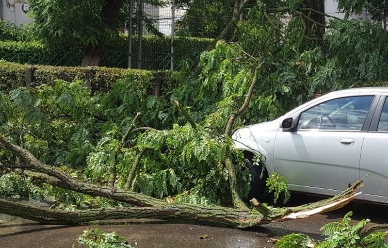 Primăria mai plătește reparațiile a patru mașini avariate de furtunile din această vară