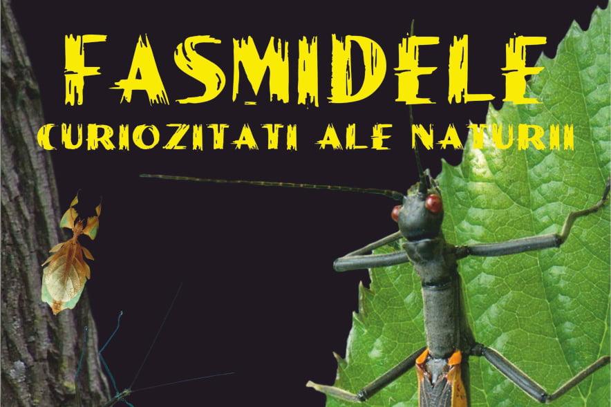 """""""Fasmidele – curiozități ale naturii"""", expoziție la Muzeul de Științe Naturale din Roman"""