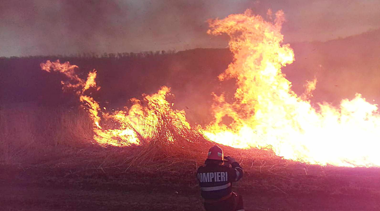 [FOTO] Incendii de vegetație uscată, la Gâdinți și Poienari