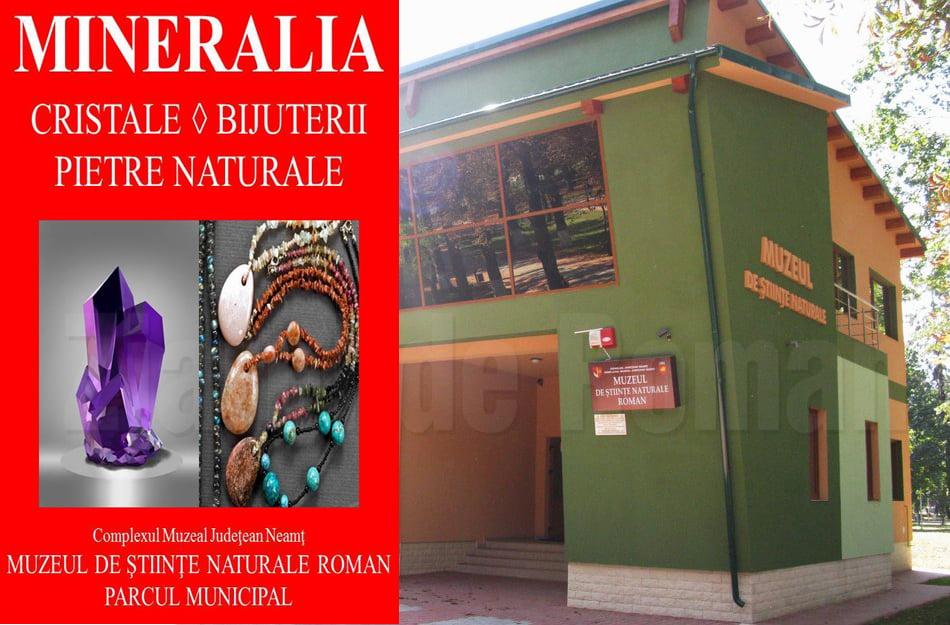 """Prima ediție a expoziţiei """"Mineralia"""" în Roman, deschisă săptămâna viitoare"""