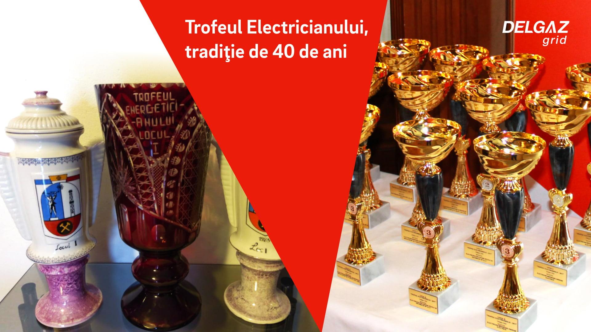 Electricienii Delgaz Grid intră în competiţie pentru Trofeul Electricianului