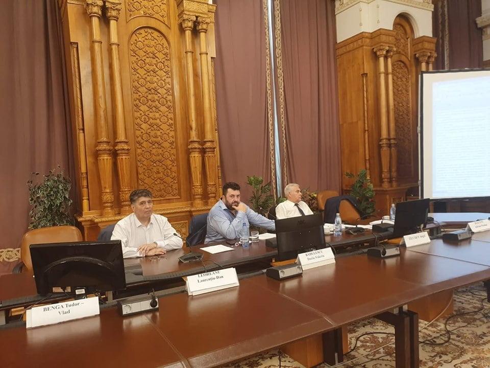Deputatul PNL Laurențiu Leoreanu, numit vicepreședinte al Comisiei speciale de modificare a legilor electorale. Pași concreți pentru votul anticipat și prin corespondență