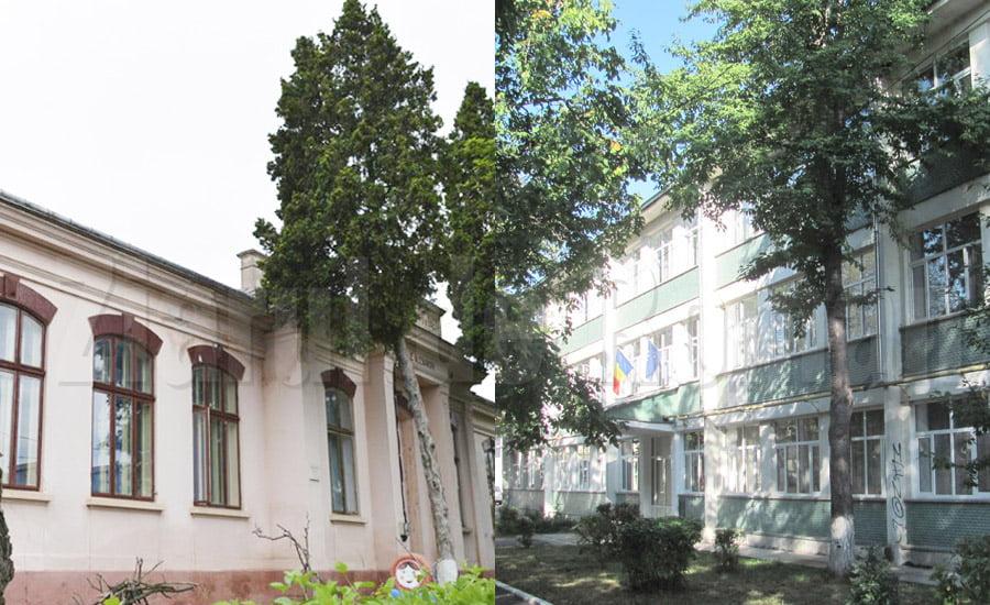 """Clase de la Școala """"Vasile Alecsandri"""", mutate la Școala """"Sergiu Celibidache"""""""