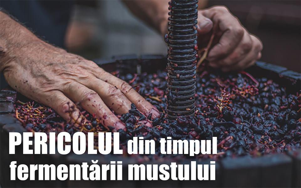 Avertismentul ISU: pericolul din timpul fermentării mustului