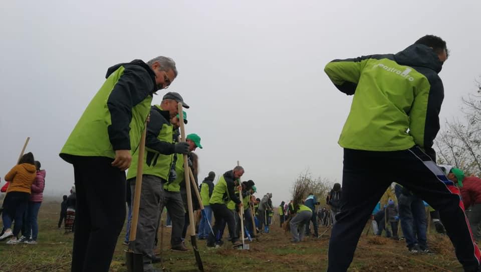 """Echipa Fereastra 1 lansează o nouă campanie de plantare de puieți în Roman – """"Verde pentru viitor 2.0"""""""