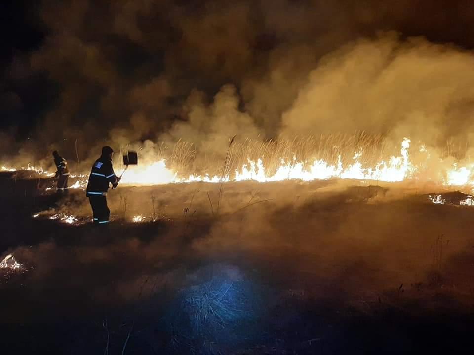 Șase incendii de vegetație uscată, în acest sfârșit de săptămână