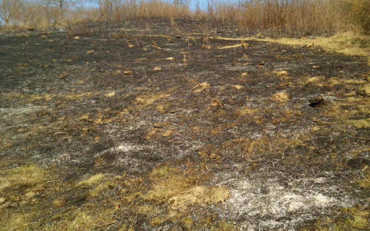 Șase incendii de vegetație uscată stinse joi de pompierii nemțeni