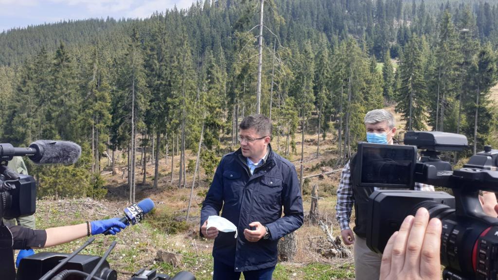 Pedepse drastice pentru tăierile ilegale de lemne, anunțate de ministrul Mediului, Apelor și Pădurilor în Neamț