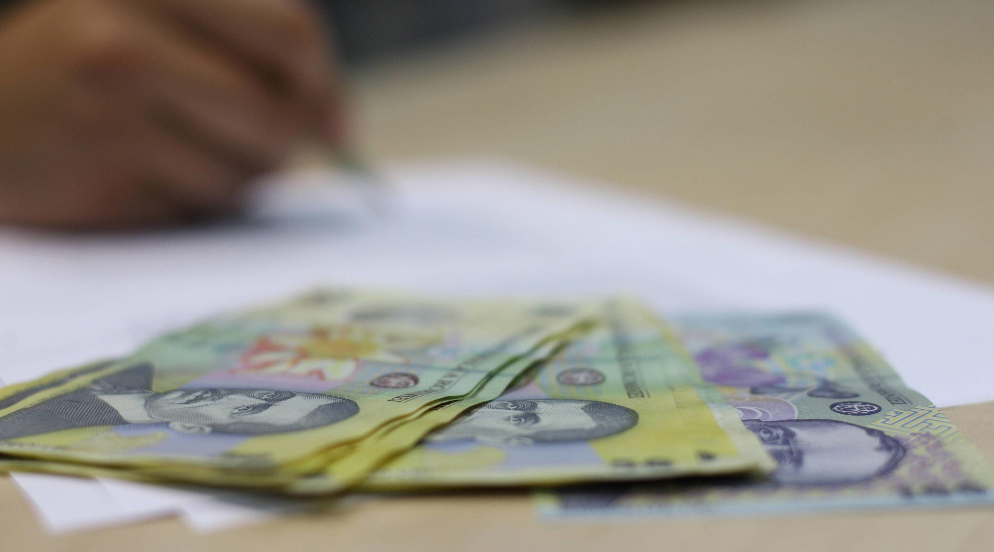 Noi emisiuni de titluri de stat, cu dobânzi de până la 4,75% plătite populației